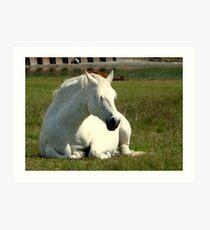 White Unicorn Sunbathing Art Print