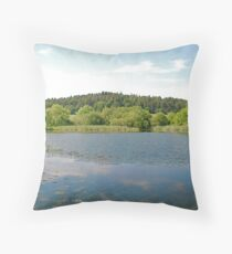 Margrove Park Wetlands Throw Pillow