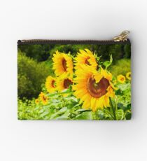 sunflower field in the mountains Studio Pouch