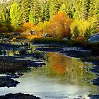 UPPER TRUCKEE RIVER by Elaine Bawden