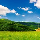 haystack on a grassy pasture in mountains by mike-pellinni
