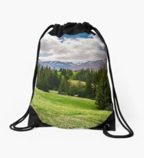 beautiful landscape with spruce forest Drawstring Bag