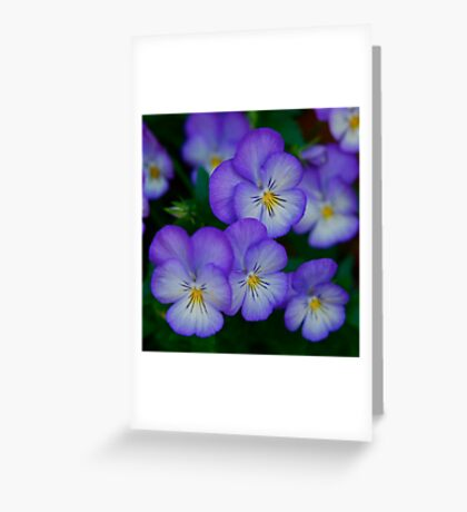 Happy Faces Greeting Card