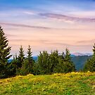forested hills over the Brustury valley at dusk by mike-pellinni
