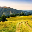 country road through grassy hillside by mike-pellinni