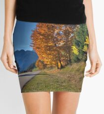 autumn Mini Skirt