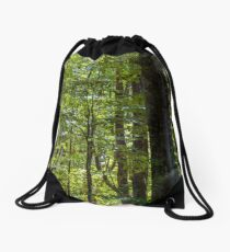 look in to the deep dark beech forest in summer Drawstring Bag