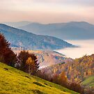 beautiful dawn in mountainous autumn landscape by mike-pellinni