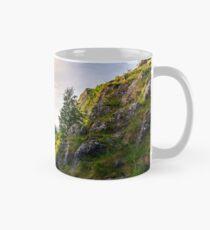road in Canyon of Trascau mountains Mug