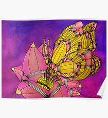 Pencil Animal Butterfly Poster