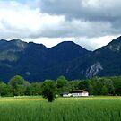 German Countryside I by Daidalos