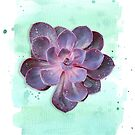 Purple Echeveria on Watercolour Background (vertical) by 416studios