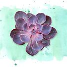 Purple Echeveria on Watercolour Background (horizontal) by 416studios