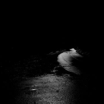 Roadside by nitschkeb