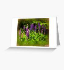 Wild Lupins Greeting Card