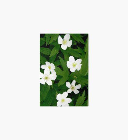 White Flowers Art Board