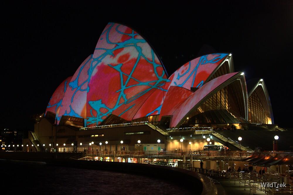 Light Art - Vivid Sydney 2009 by Mark  Hodges