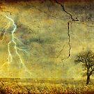 A stormy Spring by Silvia Ganora