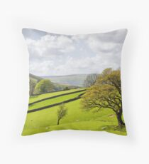 At the Foot of Dentdale Throw Pillow