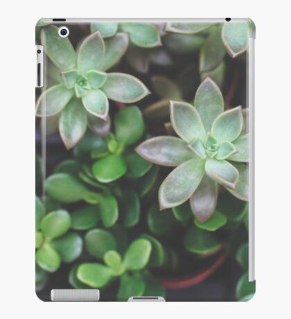 Garden Green Succulents iPad Case/Skin