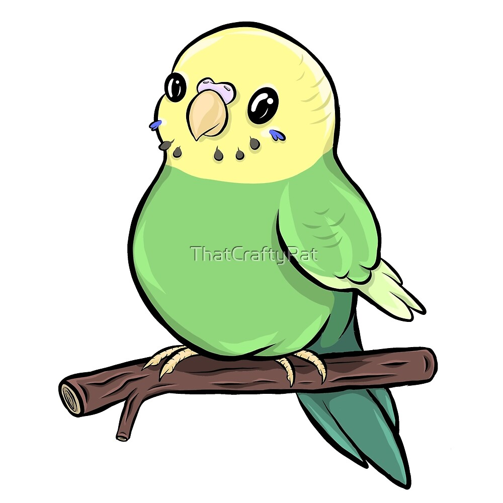 Chubby Budgie - Green base Clearwing by ThatCraftyRat
