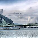 The Danube with Liberty Bridge & The Liberty Statue by Larry Davis