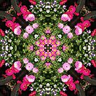 Gerbera And Ranunculus Kaleidoscope by rvjames