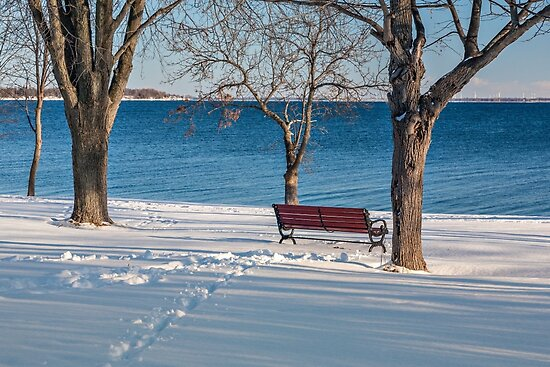A bench on the shore by PhotosByHealy