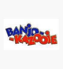 Banjo-Kazooie Photographic Print