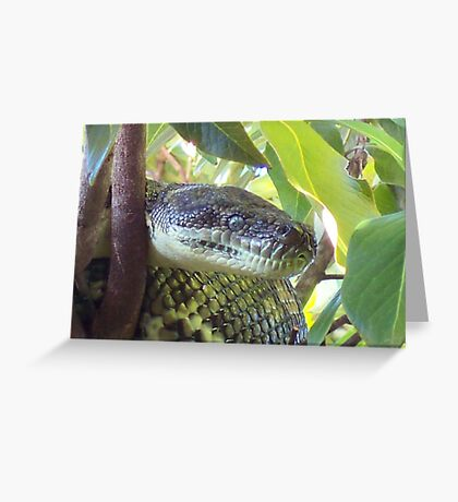 smiley ...  Greeting Card