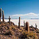 Isla del Pescado by Anita Harris