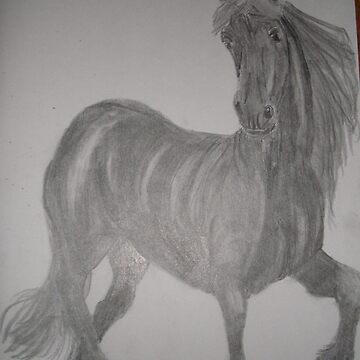 horse by christine7
