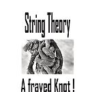 String Theory, A frayed Knot!  by CindyDs