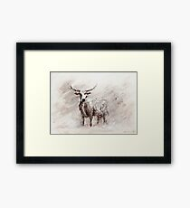 Exmoor Cow in Blizzard Framed Print