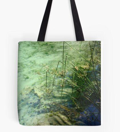 Broken Sedges - Pitt Spring Tote Bag