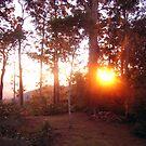 Sunrise  by medley