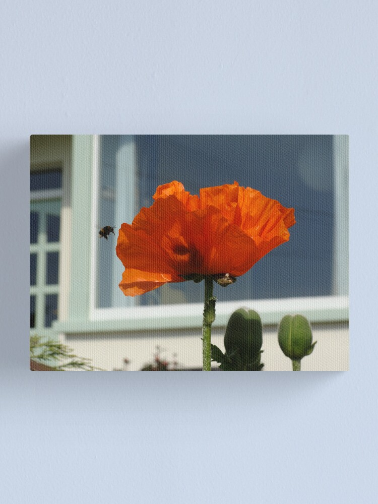 Alternate view of Perfect Moment Canvas Print