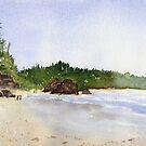 Ruby Beach, WA by Diane Hall