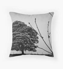 tree branch holme valley Throw Pillow