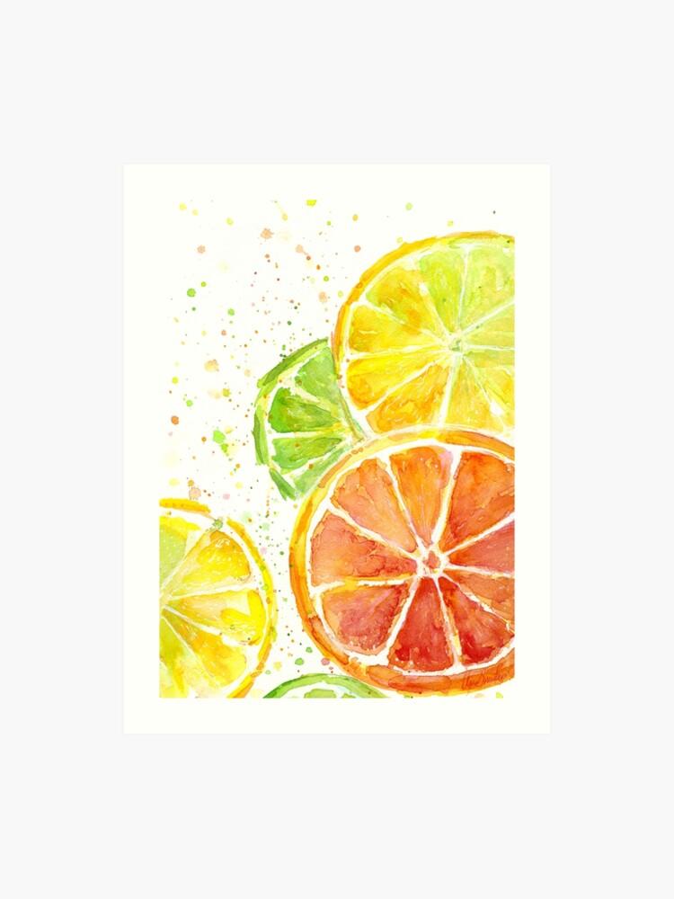9845e4d8b Juicy Citrus Fruit Watercolor
