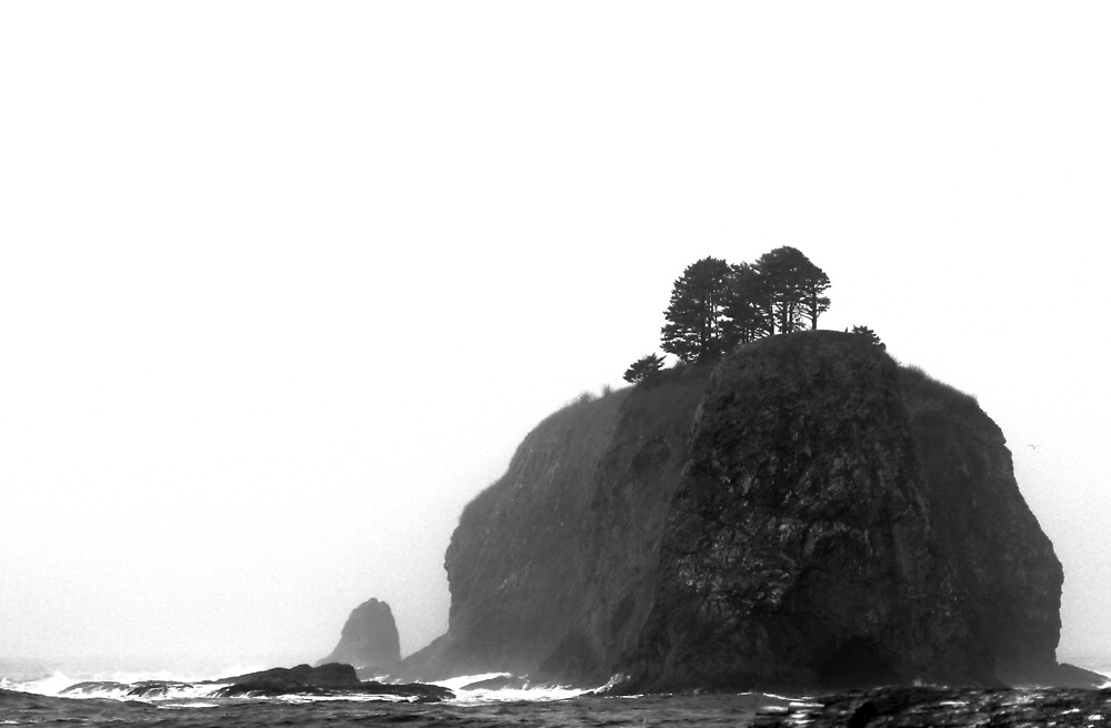 La Push Beach - 1 by bron stadheim