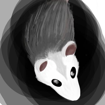 Opossum by CuriKnight5