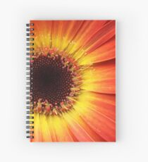 Orange Gerbera Daisy ~ Macro Spiral Notebook