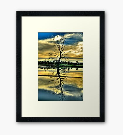 Meditation - Wonga Wetlands , Albury NSW - The HDR Experience Framed Print