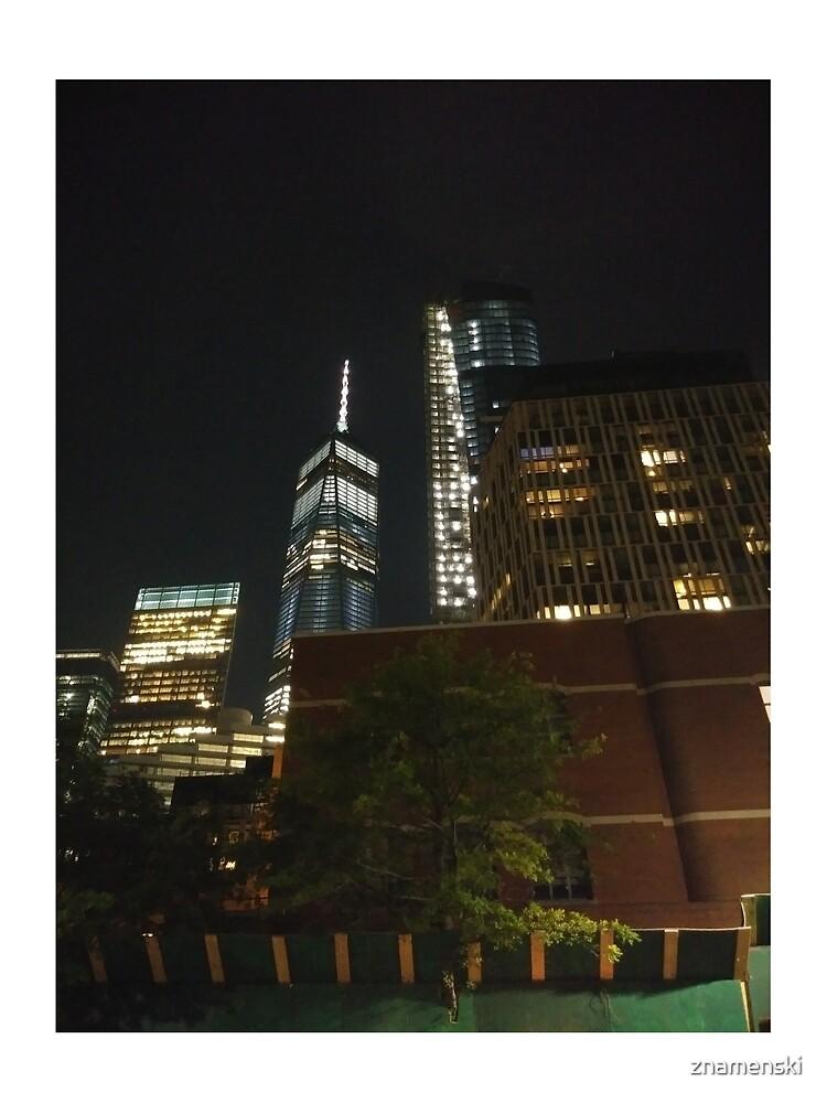 Manhattan, #Manhattan, New York, #NewYork, NYC, #NYC, New York City, #NewYorkCity by znamenski