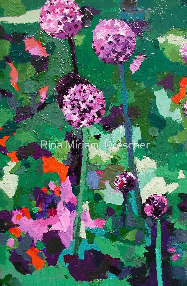 Alliums by Rina Miriam  Drescher