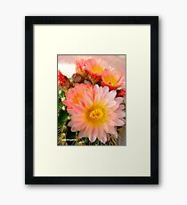 Soft And Prickly Framed Print