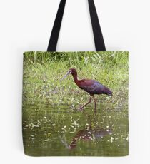 White Faced Ibis Tote Bag