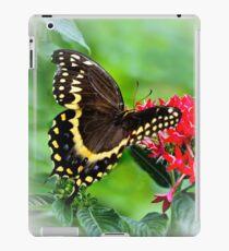 Black Swallowtail Butterfly iPad Case/Skin