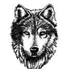 Timber Wolf von sandyeates